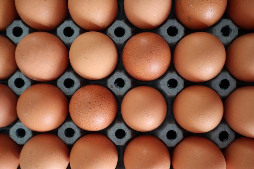 Kartong med ägg.